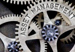 Gli strumenti e le caratteristiche dell'asset management